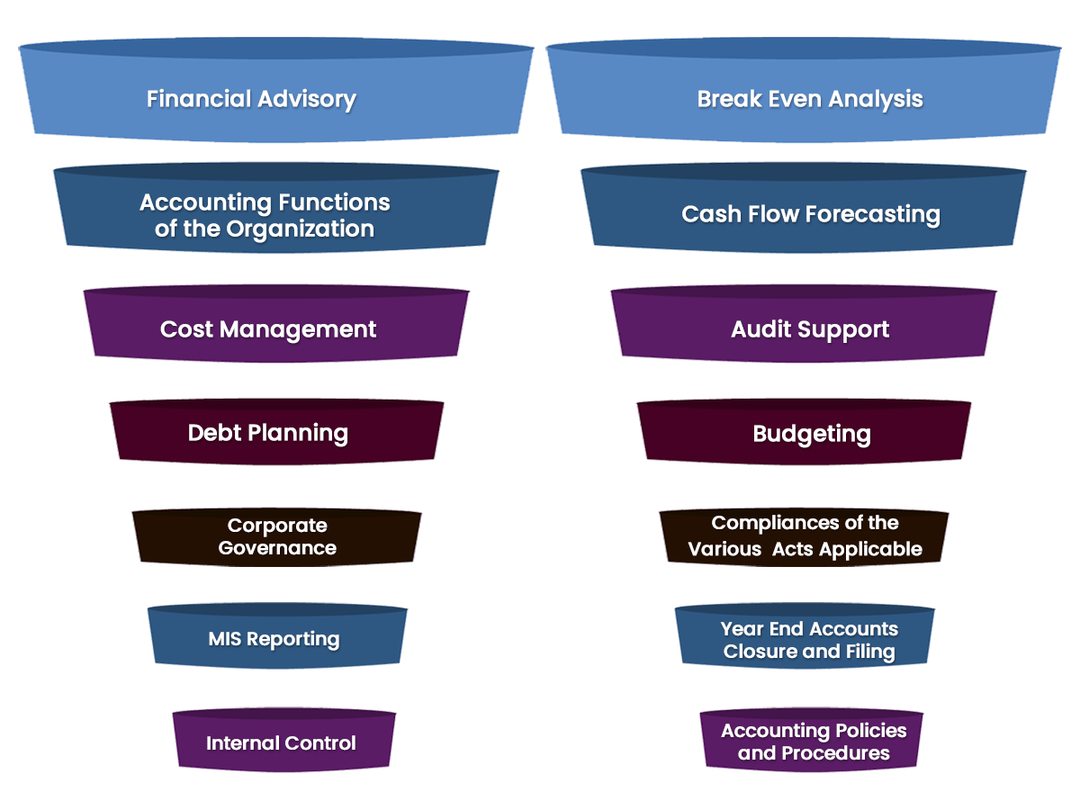 Important Virtual CFO Services