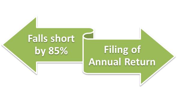 filing of annual return