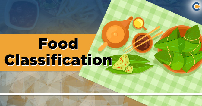 Food Classification