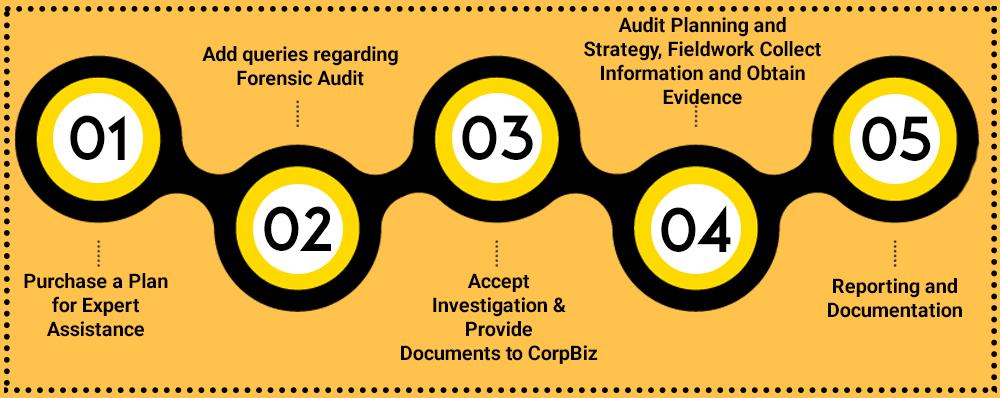 CorpBiz-Procedure-for-Forensic-Audit