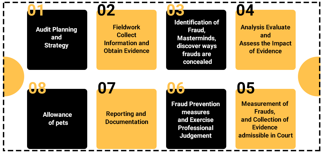 What is the procedure for conducting a Forensic Audit