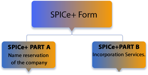 SPICe+ form is divided into 2 parts