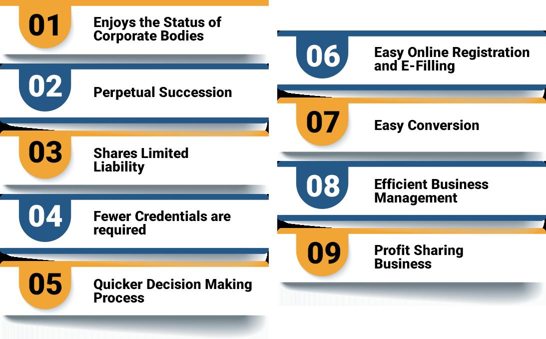Benefits of LLP Registration