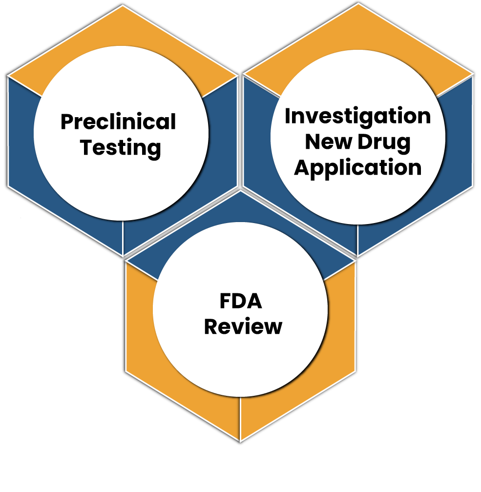 What is the FDA Certification Process for Drugs