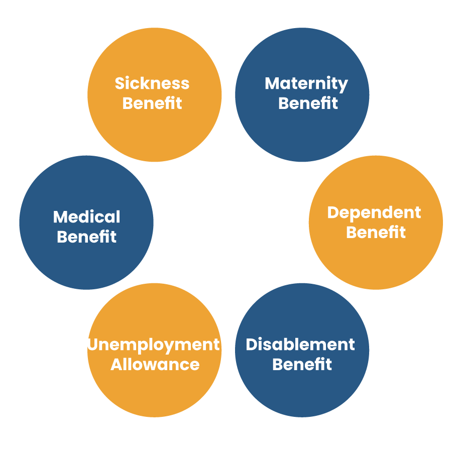 Benefits Related to ESI for Employees